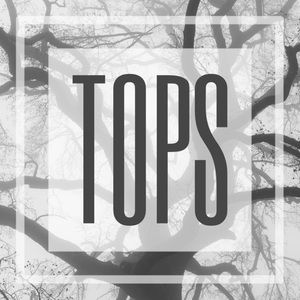 TOPS CATEGORY